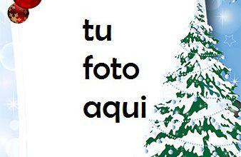 Photo of Marco Para Foto Ambiente De Vacaciones De Invierno Invierno Marcos