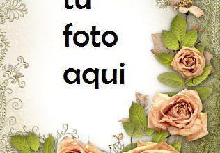Marco Para Foto Ambiente Romántico En Estilo Vintage Amor Marcos 316x220 - Marco Para Foto Ambiente Romántico En Estilo Vintage Amor Marcos