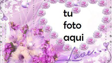 Marco Para Foto Amor Amor Marcos 390x220 - Marco Para Foto Amor Amor Marcos