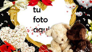 Marco Para Foto Amor De Noche Amor Marcos 390x220 - Marco Para Foto Amor De Noche Amor Marcos