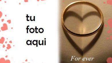 Marco Para Foto Anillo Romántico Amor Marcos 390x220 - Marco Para Foto Anillo Romántico Amor Marcos