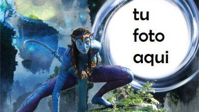 Marco Para Foto Avatar Variedad Marcos 390x220 - Marco Para Foto Avatar Variedad Marcos