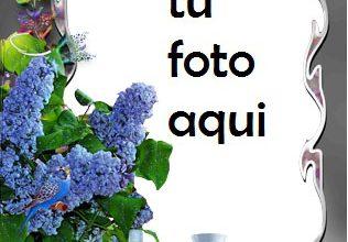 Marco Para Foto Cena Romántica Amor Marcos 316x220 - Marco Para Foto Cena Romántica Amor Marcos