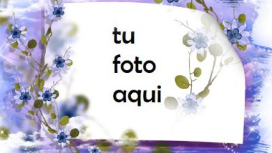 Marco Para Foto Cielo No Me Olvides Flores Amor Marcos 390x220 - Marco Para Foto Cielo No Me Olvides Flores Amor Marcos