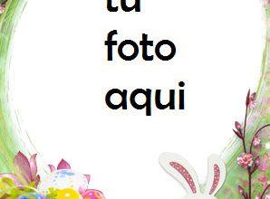 Marco Para Foto Conejo De Pascua Primavera Marcos 298x220 - Marco Para Foto Conejo De Pascua Primavera Marcos