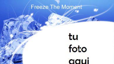 Marco Para Foto Congelar El Momento Invierno Marcos 1 390x220 - Marco Para Foto Congelar El Momento Invierno Marcos