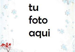 Marco Para Foto Copos De Nieve Circulares Invierno Marcos 1 316x220 - Marco Para Foto Copos De Nieve Circulares Invierno Marcos