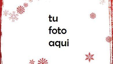 Marco Para Foto Copos De Nieve Roja Amor Marcos 390x220 - Marco Para Foto Copos De Nieve Roja Amor Marcos