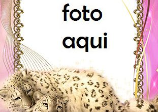 Marco Para Foto Cuadro Con Leopardos De Las Nieves Amor Marcos 311x220 - Marco Para Foto Cuadro Con Leopardos De Las Nieves Amor Marcos