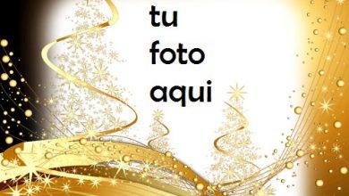 Marco Para Foto Cuento De Oro Amor Marcos 390x220 - Marco Para Foto Cuento De Oro Amor Marcos