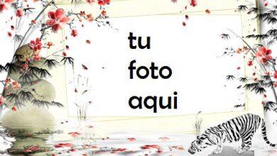 Marco Para Foto Descansar Despues Del Cazador Amor Marcos 390x220 - Marco Para Foto Descansar Despues Del Cazador Amor Marcos