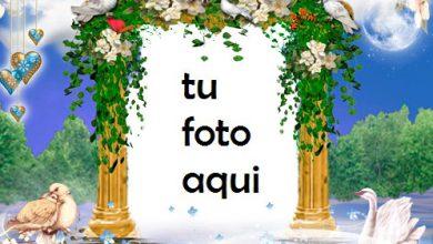 Photo of Marco Para Foto Estado De Ánimo Romántico Amor Marcos