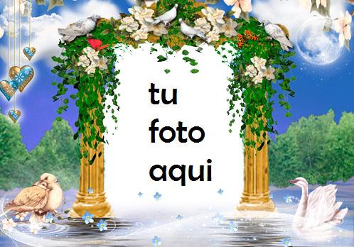 Marco Para Foto Estado De Ánimo Romántico Amor Marcos - Marco Para Foto Estado De Ánimo Romántico Amor Marcos
