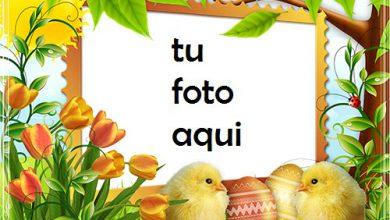 Marco Para Foto Felices Pascuas Con Chicas Lindas Primavera Marcos 390x220 - Marco Para Foto Felices Pascuas Con Chicas Lindas Primavera Marcos