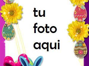 Marco Para Foto Felices Pascuas Primavera Marcos 298x220 - Marco Para Foto Felices Pascuas Primavera Marcos