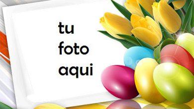 Photo of Marco Para Foto Feliz Pascua Con Tulipanes De Primavera Primavera Marcos