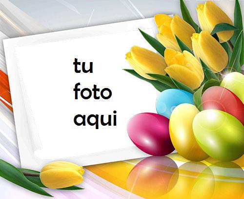 Marco Para Foto Feliz Pascua Con Tulipanes De Primavera Primavera Marcos - Marco Para Foto Feliz Pascua Con Tulipanes De Primavera Primavera Marcos