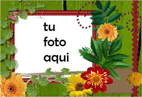 Marco Para Foto Flores Brillantes Primavera Marcos - Marco Para Foto Flores Brillantes Primavera Marcos