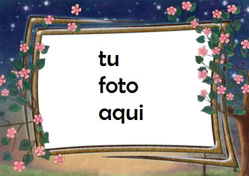 Marco Para Foto Flores De Noche Amor Marcos - Marco Para Foto Flores De Noche Amor Marcos