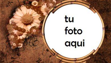 Marco Para Foto Flores Retro Amor Marcos 390x220 - Marco Para Foto Flores Retro Amor Marcos