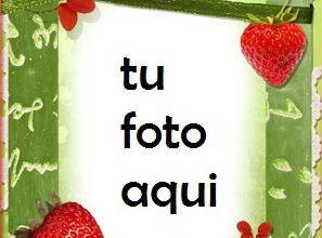 Marco Para Foto Fresas Jugosas Amor Marcos 297x220 - Marco Para Foto Fresas Jugosas Amor Marcos