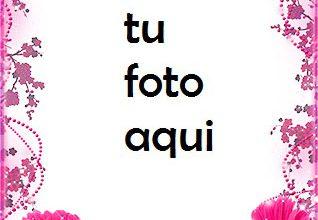 Marco Para Foto Gerberas Rosas En Tu Cumpleaños Amor Marcos 318x220 - Marco Para Foto Gerberas Rosas En Tu Cumpleaños Amor Marcos