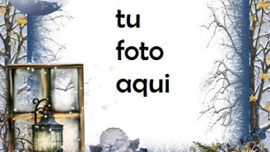 Photo of Marco Para Foto Lindo Pequeño Dragón Invierno Marcos