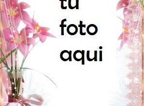 Marco Para Foto Lirios Rosados Amor Marcos 298x220 - Marco Para Foto Lirios Rosados Amor Marcos