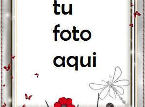 Marco Para Foto Luz Plateada Amor Marcos 297x220 - Marco Para Foto Luz Plateada Amor Marcos