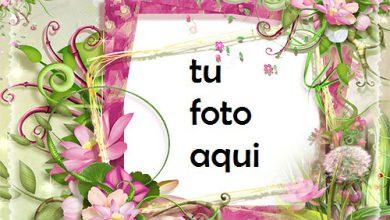 Photo of Marco Para Foto Marco De Fotos Con Flores Rosas Y Verdes Amor Marcos