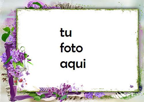Marco Para Foto Marco De Fotos Rodeado De Flores Lilas Amor Marcos - Marco Para Foto Marco De Fotos Rodeado De Flores Lilas Amor Marcos
