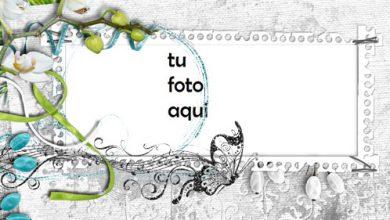 Photo of Marco Para Foto Marco De Orquídea Amor Marcos