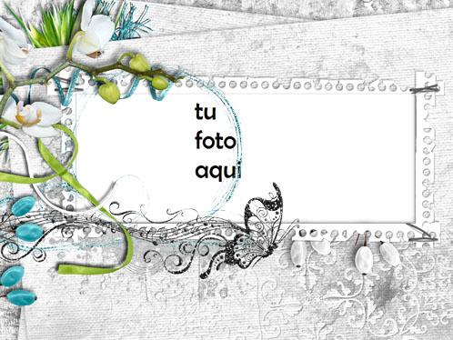 Marco Para Foto Marco De Orquídea Amor Marcos - Marco Para Foto Marco De Orquídea Amor Marcos