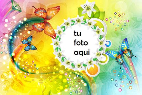 Marco Para Foto Mariposas De Varios Colores Amor Marcos - Marco Para Foto Mariposas De Varios Colores Amor Marcos
