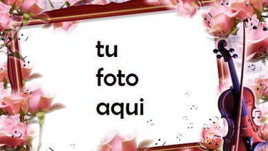 Marco Para Foto Melodía De Ternura Amor Marcos 390x220 - Marco Para Foto Melodía De Ternura Amor Marcos