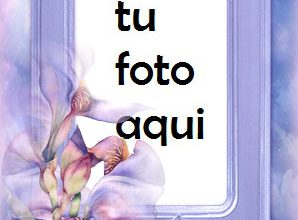 Marco Para Foto Mi Cumpleaños Amor Marcos 298x220 - Marco Para Foto Mi Cumpleaños Amor Marcos