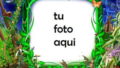 Marco Para Foto Mundo De Hadas Primavera Marcos 390x220 - Marco Para Foto Mundo De Hadas Primavera Marcos