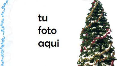 Photo of Marco Para Foto Noche Antes De Navidad En Estilo Retro Invierno Marcos