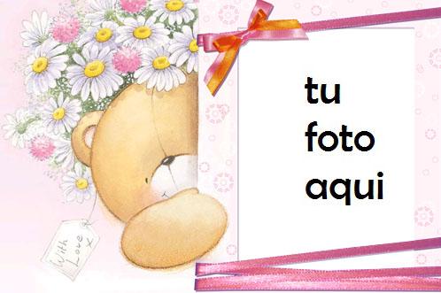 Marco Para Foto Oso De Peluche Chamomiles Amor Marcos - Marco Para Foto Oso De Peluche Chamomiles Amor Marcos