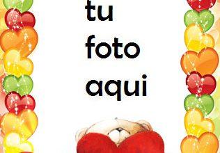 Marco Para Foto Oso De Peluche Romántico Amor Marcos 316x220 - Marco Para Foto Oso De Peluche Romántico Amor Marcos