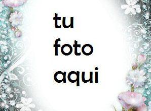 Photo of Marco Para Foto Peonias Encanto Y Belleza Amor Marcos