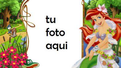 Marco Para Foto Pequeñas Abejas Niños Marcos 390x220 - Marco Para Foto Pequeñas Abejas Niños Marcos