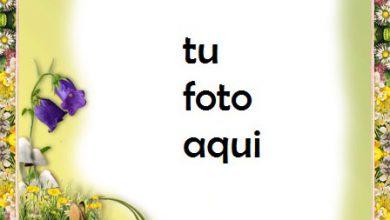 Marco Para Foto Recuerdos Del Verano Con Hermoso Marco De Fotos Amor Marcos 390x220 - Marco Para Foto Recuerdos Del Verano Con Hermoso Marco De Fotos Amor Marcos