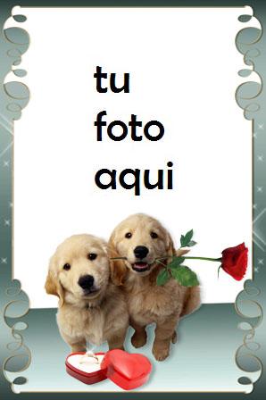 Marco Para Foto Regalo Romántico Amor Marcos - Marco Para Foto Regalo Romántico Amor Marcos