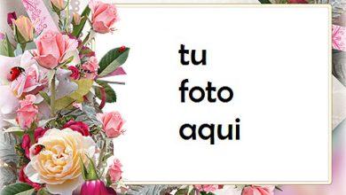 Marco Para Foto Rosas De Un Jardín Amor Marcos 390x220 - Marco Para Foto Rosas De Un Jardín Amor Marcos