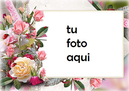Marco Para Foto Rosas De Un Jardín Amor Marcos - Marco Para Foto Rosas De Un Jardín Amor Marcos