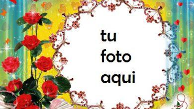 Marco Para Foto Rosas Y Mariposas Amor Marcos 390x220 - Marco Para Foto Rosas Y Mariposas Amor Marcos