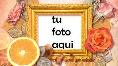 Marco Para Foto Rosas Y Naranja Amor Marcos 390x220 - Marco Para Foto Rosas Y Naranja Amor Marcos