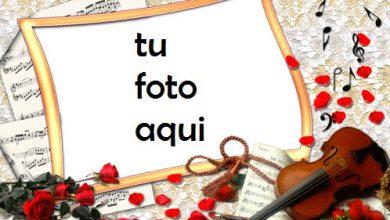 Marco Para Foto Rosas Y Violín Amor Marcos 390x220 - Marco Para Foto Rosas Y Violín Amor Marcos