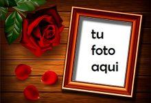 Marco Para Foto Se Levantó Sobre La Mesa Amor Marcos 220x150 - Marco Para Foto Se Levantó Sobre La Mesa Amor Marcos